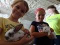 On the farm with bunnies.